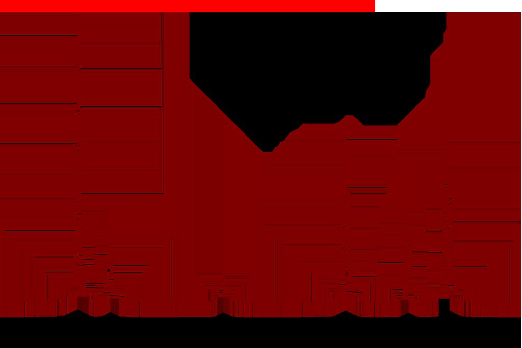 Project - lipids of Segura Lab
